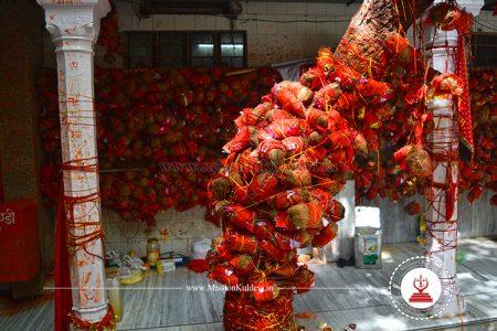 wish-tree-salasar-balaji-temple-churu-rajasthan